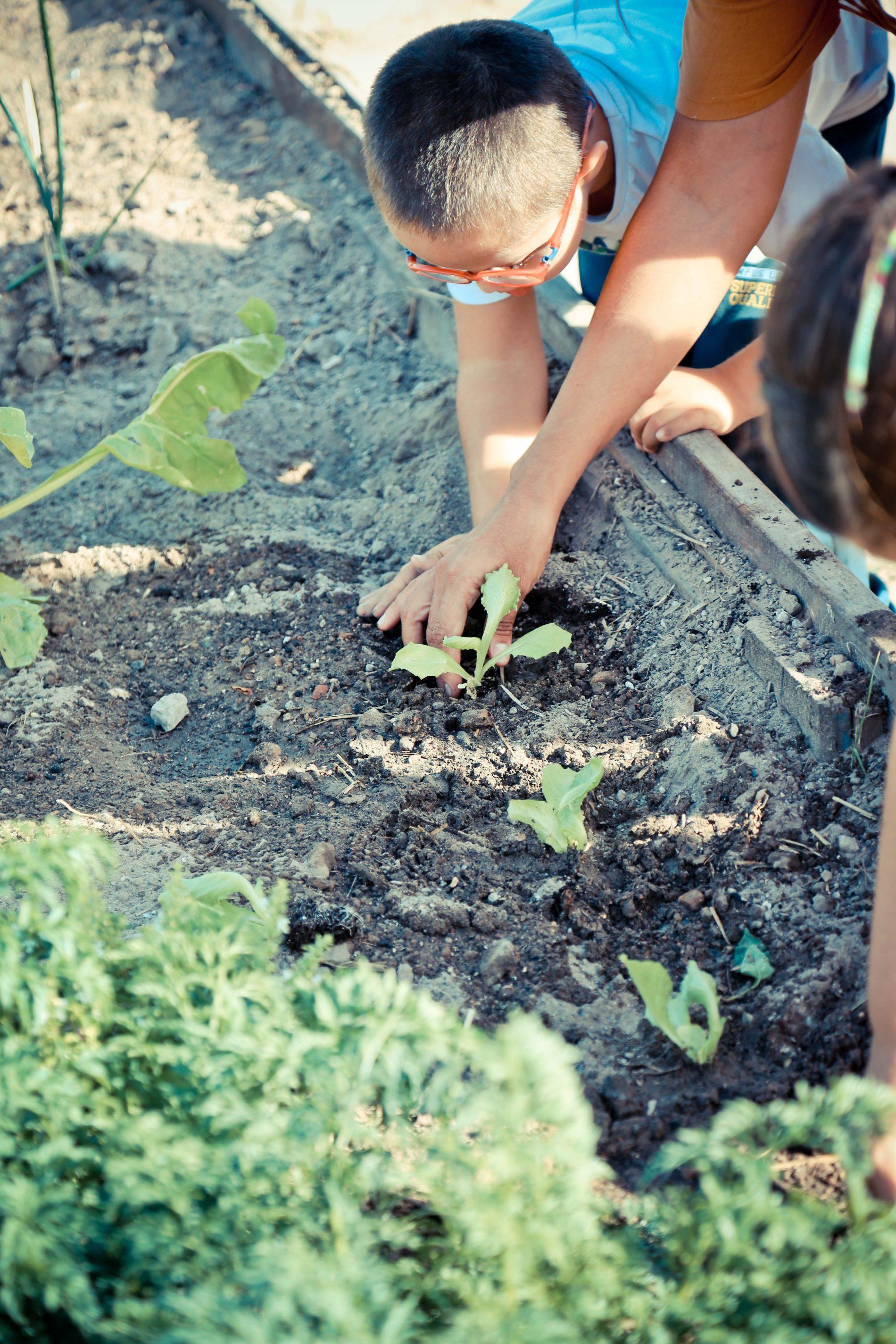 Ayudando al futuro en CabanyalHorta foodtopia